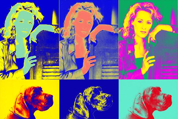 Pop Art Im Andy Warhol Stil Photoshophexe