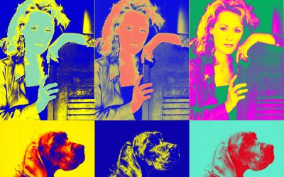 Pop-Art im Andy Warhol Stil