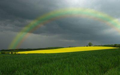 Einen künstlichen Regenbogen erstellen